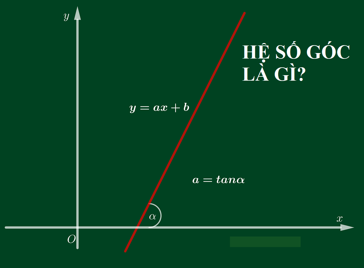 Hệ số góc là gì? Lý thuyết hệ số góc của đường thẳng và cách tính